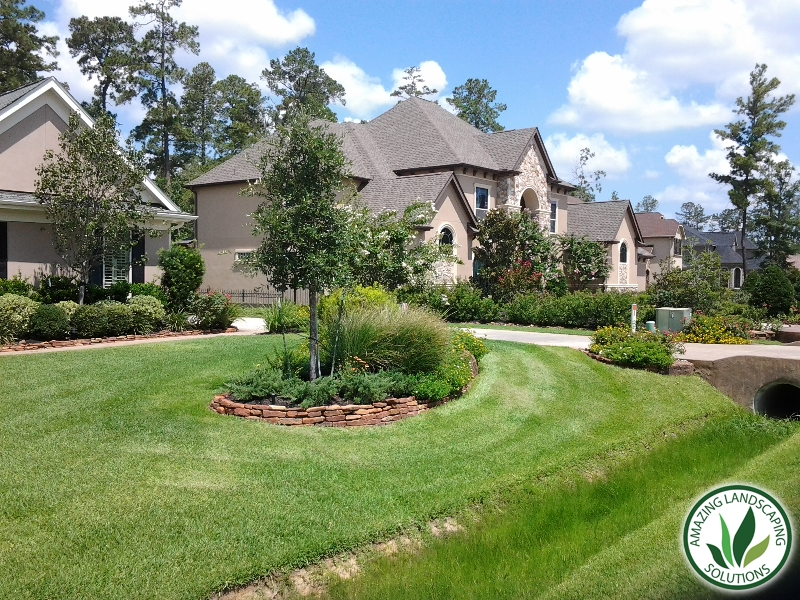 Front yard bushes and drainage landscaping