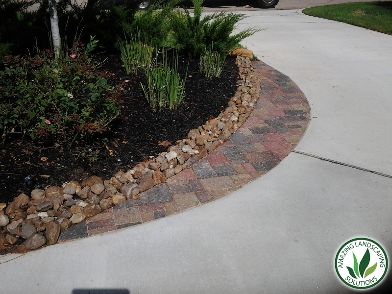 pathway through plants and mulch landscaping