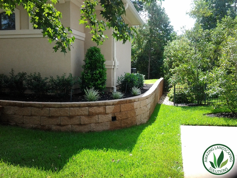backyard lawn grass, trees and plants in Pasadena, Texas