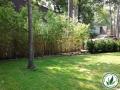 Landscaped green yard