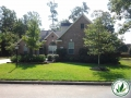 trees and mulch yard landscaping in the Woodlands