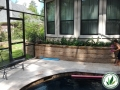 backyard patios and pools landscaping